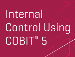 internal_control_using_cobit5