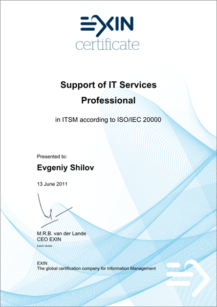 Professional Support of IT Services according to ISO/IEC 20000