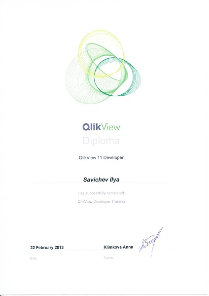 QlikView 11 Developer, QlikTech